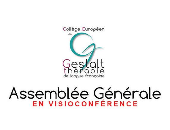 Assemblée générale en visioconférence